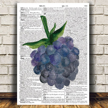 Blackberry poster Kitchen art Food print Fruit print RTA1712