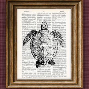 SEA TURTLE beautifully upcycled vintage dictionary page book art print 8.5 x 11