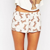 Bigger Size Made Cute Shorts Women Dachshund Dog Print Elastic Waist Cotton Blend Knitted Stretchy Shorts S-XL B6701