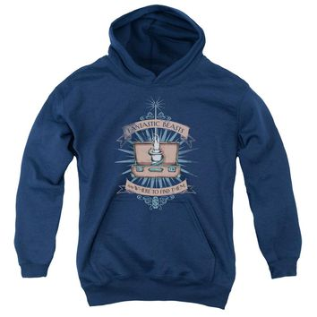 Fantastic Beasts - Briefcase Youth Pull Over Hoodie