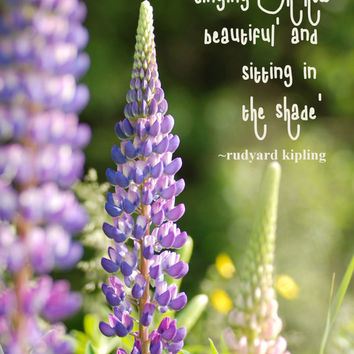 Lupins, Digital Download Photography, Inspirational Quote, Nature Photography, Flower Photography, Quote Art, Literary Quote, Printable Art