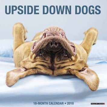 Underdogs Wall Calendar, More Dogs by Willow Creek Press
