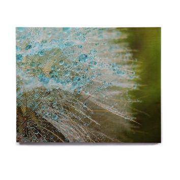 "Ginkelmier ""Blue Rain Dandelion"" Green Photography Birchwood Wall Art"