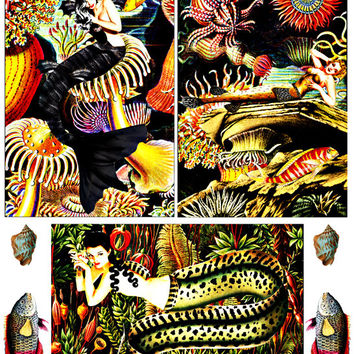 """mermaid altered art vintage pin up girls clip art digital printable image graphics collage sheet 4x6"""" scrapbooking crafts supplies cards"""
