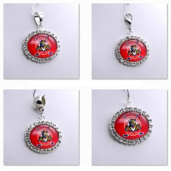 Pendant Charms Rhinestone NHL Florida Panthers Charms for Bracelet Necklace for Women Men Ice Hockey Fans Paty Fashion 2017