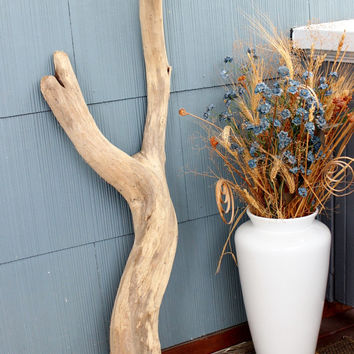 Magnificent Free Form Driftwood Sculpture , Surf Tumbled Coastal Home Decor , Beach Wedding & Nautical Room Decoration