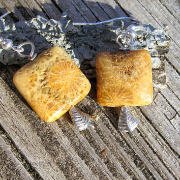Agatized Fossil Coral Earrings