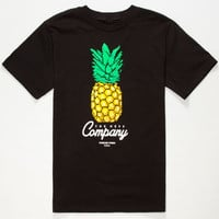 Neff Pixelated Pineapple Boys T-Shirt Black  In Sizes