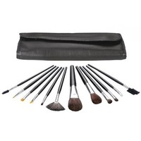 13 Piece Brush Set With Case
