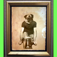 Pug on a Bike - Pug Cyclist - Pug on a Bicycle- Tour de Pug - Vintage Collage Art Print on Tea Stained Paper - Vintage Art Print