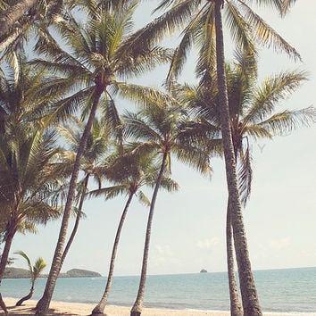 Palm Cove - Photographic Print - Palm Tree, Australia, Bohemian, beach, palms, boho, beachy, travel, cairns, Wall, Decor, Hanging,