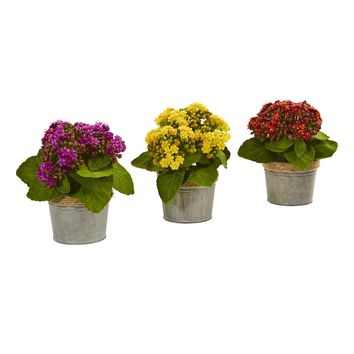 Kalanchoe Artificial Arrangements (Set of 3)