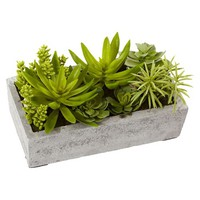 Nearly Natural Succulent Garden with Concrete Planter