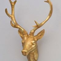 ModCloth Rustic Antler Me This Wall Decor