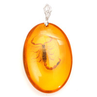 Oval Beeswax Scorpion Insect Necklace Pendant