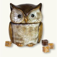 Hoot Owl Candy Jar | Owl Cookie Jar