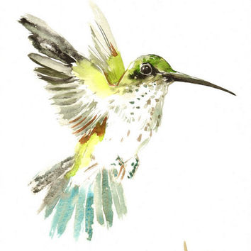 Hummingbird, Original watercolor painting, 12 X 9 in, green hummingbird wall art, hummingbird lover