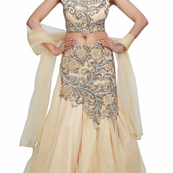 Beige color Beautiful lehenga choli available online