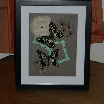 Chinese Lime & Chinese Yellow Swallowtail mounted in a real wood  shadow box frame