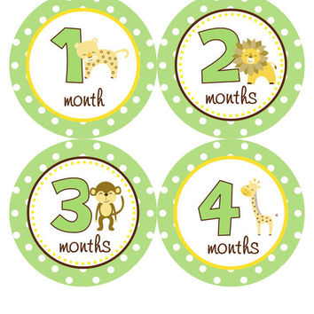 Monthly Onesuit Stickers Boy Baby Month Stickers Green Jungle Safari Monkey Stickers Onesuit Sticker Baby Shower Gift Photo Prop Caden