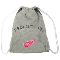 NHL Detroit Red Wings Hoodie Cinch Backpack, 14 x 17-Inch, Gray