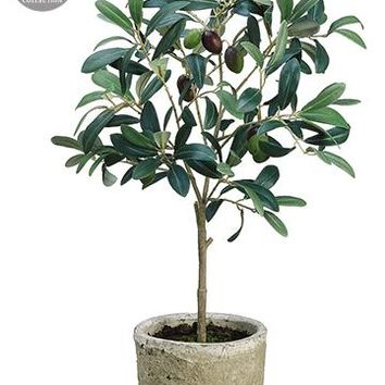 """Olive Leaf Branch Fake Plants in Clay Pot - 19.5"""" Tall"""