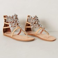 Diamant Sandals by Jeffrey Campbell