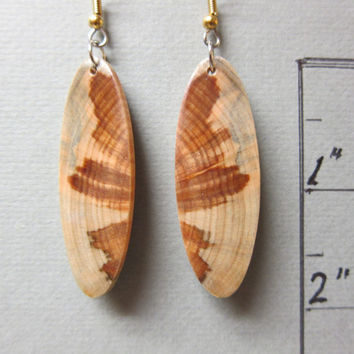 Glowing Norfolk Island Pine Exotic Wood Earrings, ExoticWoodJewelryAnd Butterfly wings Hypoallergenic wires