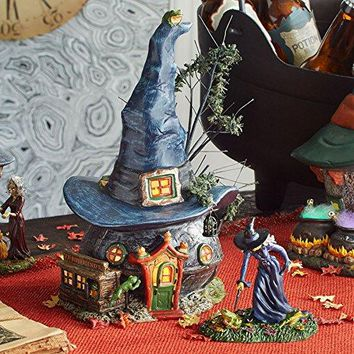 Department 56 Snow Village Halloween Toads and Frogs Witchcraft Haunt Lit House, 5.91 inch