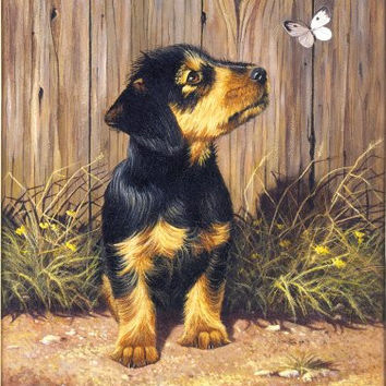 Royal & Langnickel Painting by Numbers Junior Small Art Activity Kit, Dachshund Puppy