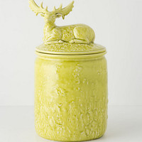 Deer In Repose Cookie Jar