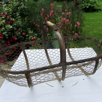 Antique French Oyster Gathering Wire Basket Rustic Home Decor