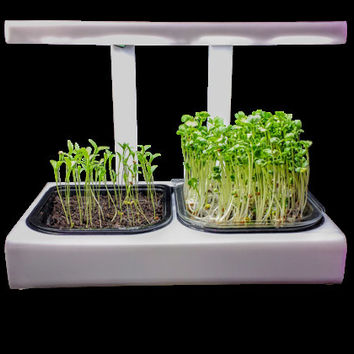 Easy Grow MicroFarm Growing System, Supplemental LED Lighting for MicroFarm Units