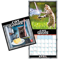 2017 Cat Wars Wall Calendar