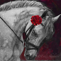 Horse Canvas Print 14x14 Limited Edition
