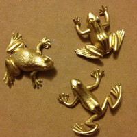 Metalic Frog Magnets (2)