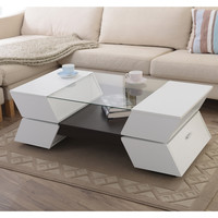 Furniture of America Anjin Enzo Contemporary Two-tone Multi-storage Coffee Table