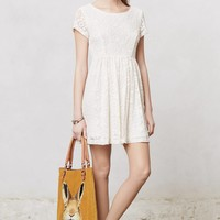 Lace Villa Dress