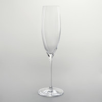 Connoisseur Champagne Flute, Set of 6 - World Market
