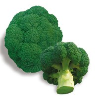 Ding green broccoli seeds vegetable 10seed