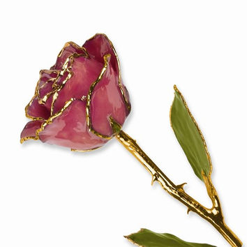 24k Gold Plated Trim Dusty Pink Rose