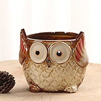 YOURNELO Vintage Ceramic Animals Plant Flower Pot Succulent Planters Vase (Owl 21)