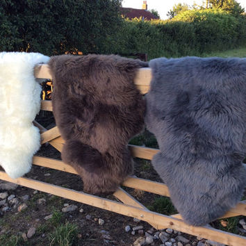 Sheepskin Rug With A True Dorset Story