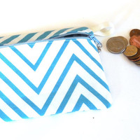 Coin purse, Make up bag, purse organizer, card holder, supply organizer, womens accessories