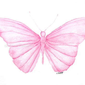 pink butterfly  watercolor painting archival 5 x 7 print