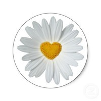 Daisy Heart Stickers from Zazzle.com