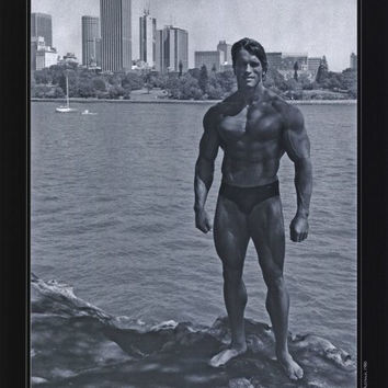 Arnold Schwarzenegger 27x40 Movie Poster