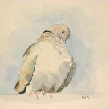 A Dove. Original watercolor painting.