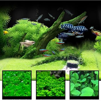 Aquatic Water Grass 7 Styles Aquarium Plants Love Plastic Water Grass Fish Tank Plants Decoration Landscape Ornament