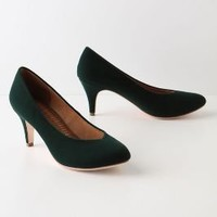Velvet Kitten Heels - Anthropologie.com
